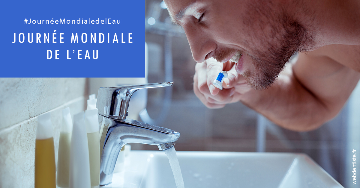 https://dr-eric-dumolard.chirurgiens-dentistes.fr/Journée de l'eau 2